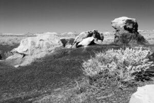 Bisti Wilderness #106 festured