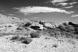 Bisti Wilderness featured